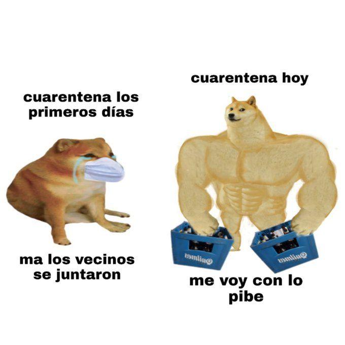 Pin De Nicole Valentina Em Memes Madrugada