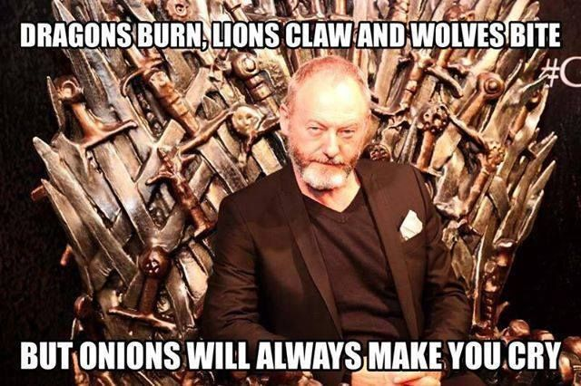 The Onion Knight on the Iron Throne: Liam Cunningham as Ser Davos Seaworth