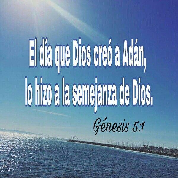 La semejanza entre Dios y el hombre lógicamente no es el físico, es tener cualidades como: el amor, la sabiduría, la justicia, el poder, entre otros... ✍✍✍