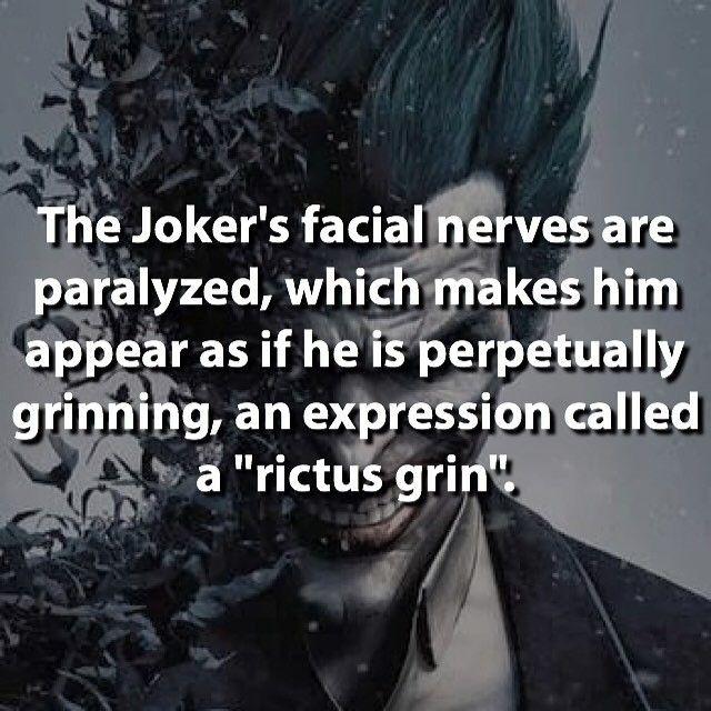 "Interesting... ""rictus grin"" that's cool. Follow for more awesome #geektent all day everyday nice fact repost @supervillainfacts Joker!!! Follow us: @aafact #joker #thejoker #facialnerves #villain #batman #batmanvillain #rictusgrin #grimming #villains #villainfact #villainfacts #dc #dcfact #dcuniverse #dccomics #suicidesquad #darknight #batmanbegins #interesting #cool #true #fact #geek #geeky #nerdy #nerdygirl #geekyguy #comiccon #sdcc2016"