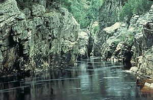 The Franklin River Campaign -  The beginnings of Australia's Environmental movement  (1998) Celebrating the 25th Anniversary of this landmark High Court decision, writes William J. Lines [The Wilderness Society website]