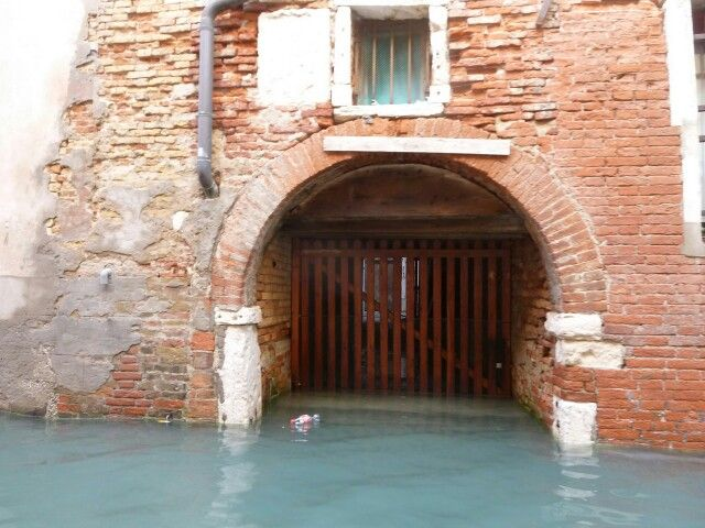 #mytripadvice: Venice the effects of acqua alta (High tide) in Venice. The town is sinking into the Adriatic Sea. See it soon!