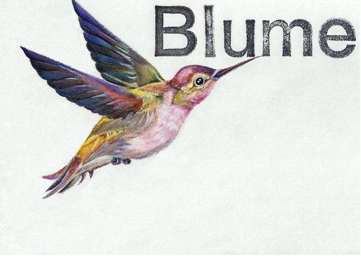 Kolibri trifft Blume