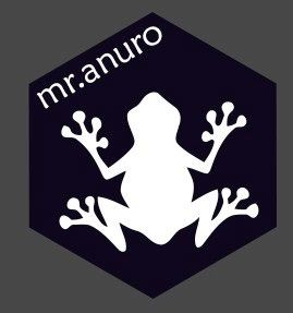 Imagen Corporativa Mr.anuro