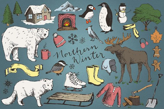 34 hand drawn sketched winter clipart illustrations include a snow fox, penguin, polar bear, sled, sweater, cabin, moose, snowflakes, chickadee,