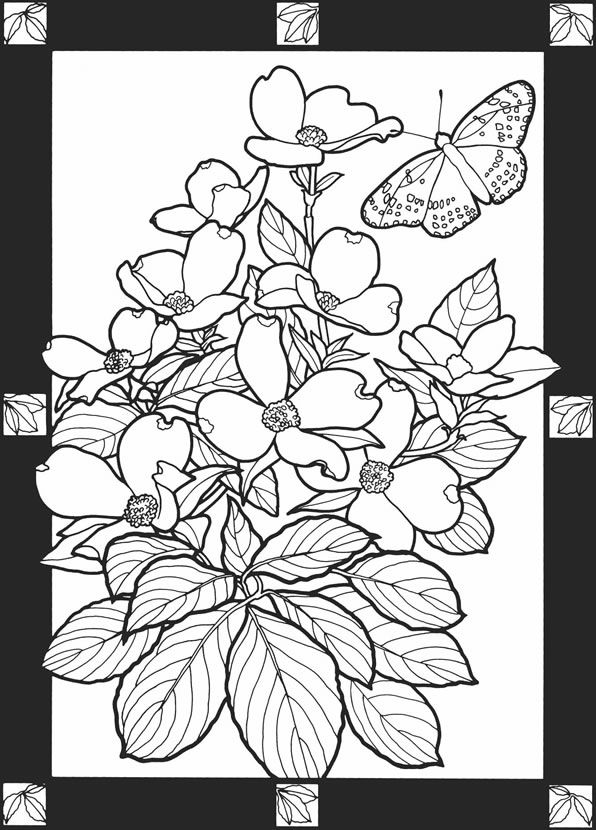 From Leaves Of The Seasons Stained Glass Coloring Book