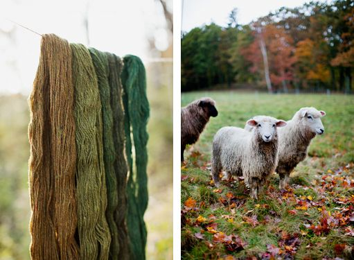 Wool from A to Z.