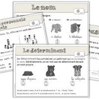 Leçons - Réussir son entrée en grammaire au CE1