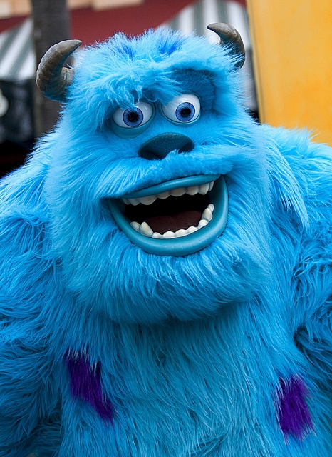 Sullivan from Monsters Inc. #FLVS #colormeblue