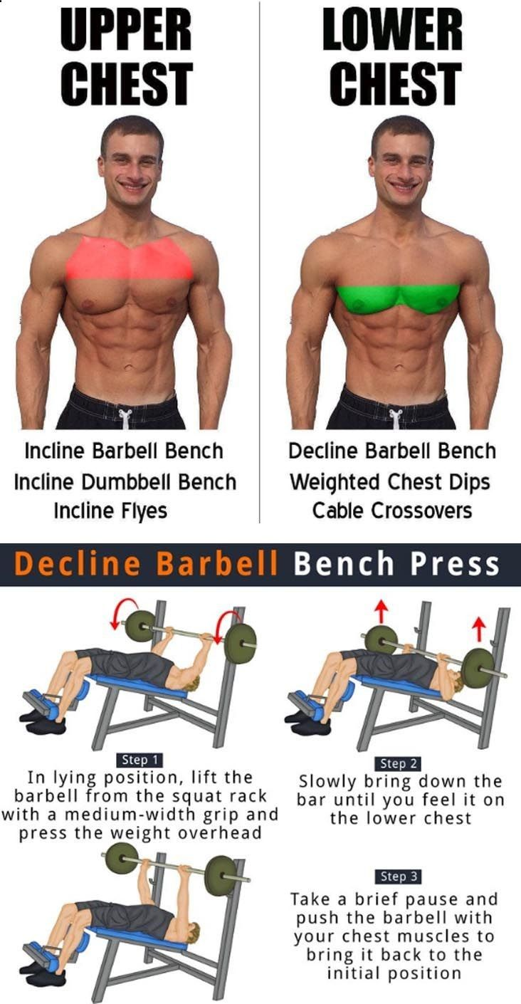 Outstanding Decline Bench Press Benefits Gym Workout For Beginners Beatyapartments Chair Design Images Beatyapartmentscom