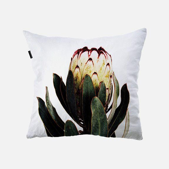 Clinton Friedman - Fynbos Protea Cushion Cover