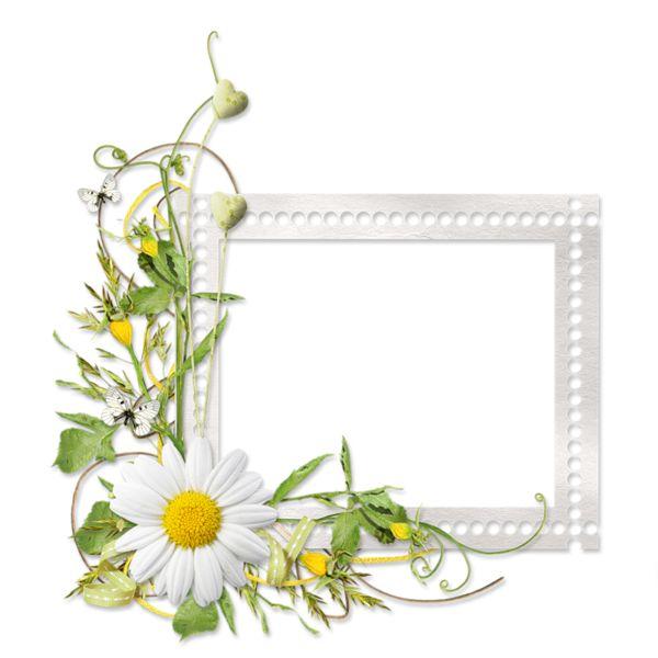 339 best images about frames 3 floral on pinterest ux ui designer victorian photos and. Black Bedroom Furniture Sets. Home Design Ideas