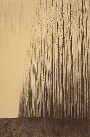 戸村 茂樹/Shigeki Tomura, Born in 1951, Japanese Print maker.