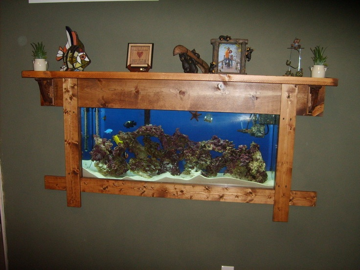 10 best ideas about fish tank wall on pinterest home for Bookshelf fish tank