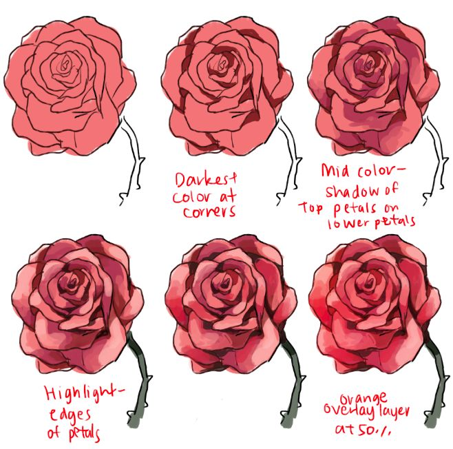 how to draw a rose on powerpoint