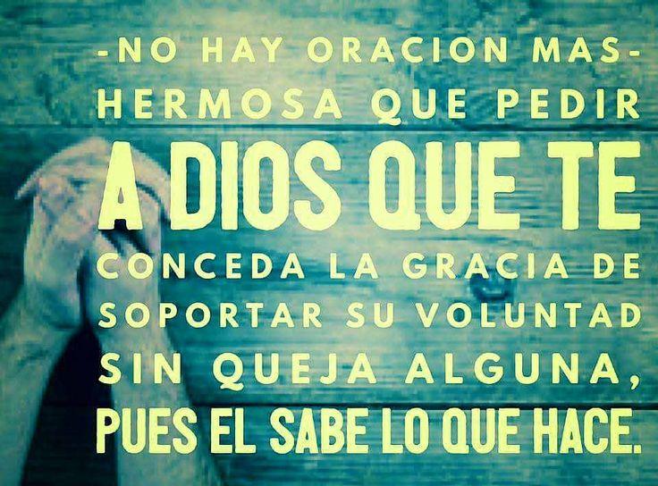 No hay oración mas hermosa que pedir a Dios que te conceda la Gracia de soportar su voluntad sin queja alguna, pues el sabe lo que hace.