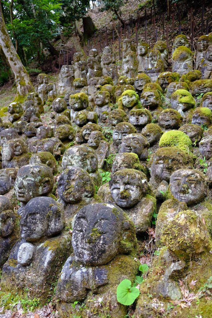Otagi nenbutsu-ji, Kyoto, Japan- Ungt Blod