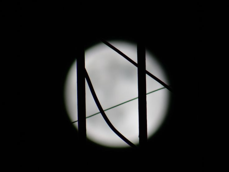 E. HASIOTIS full moon 13