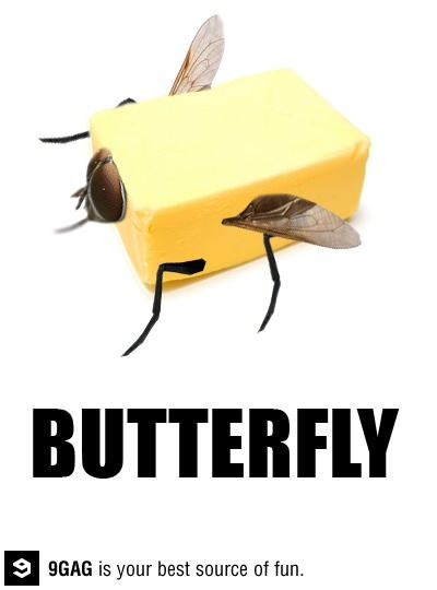The Butter Fly