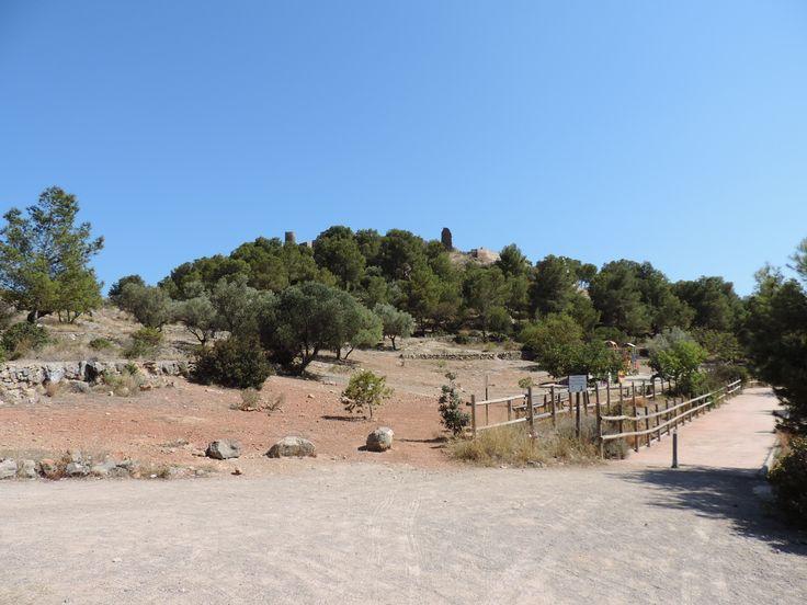 Vista del Castell Vell