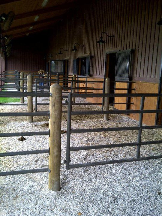 Like the more solid pipe. Individual pipes are easier to replace when need be - instead of having to replace an entire panel for one slat being badly damaged. Not sure about the gates between each run. And is that gravel I see?  Good for barefoot horses if it is:)