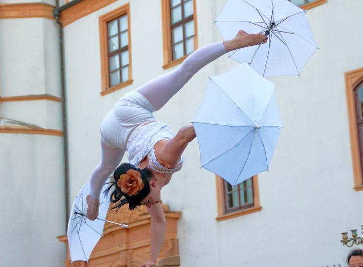 Die Artistokraten lassen Ihr Publikum nie im Regen stehen.