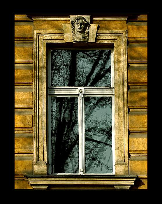 Window - Yuri Bonder