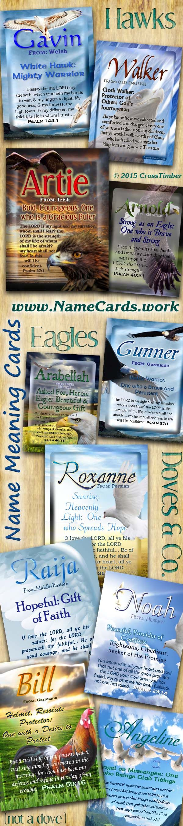 Plaques with name meanings - Name Meaning Cards With Eagles Doves Hawks And A Rooster Come Personalize For