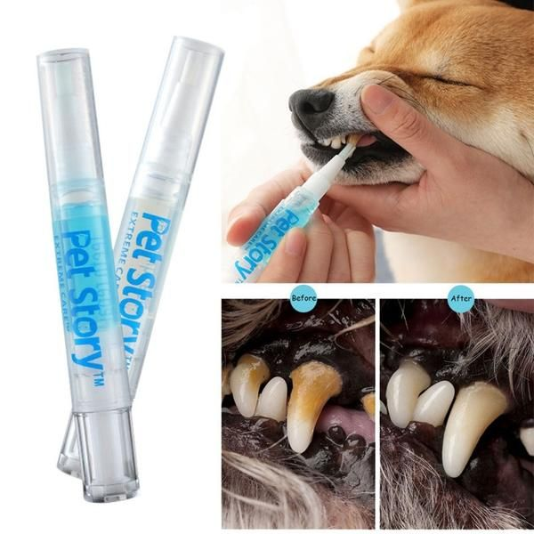 Pet Dog Cat Teeth Cleaning Pen In 2020 With Images Dog Teeth