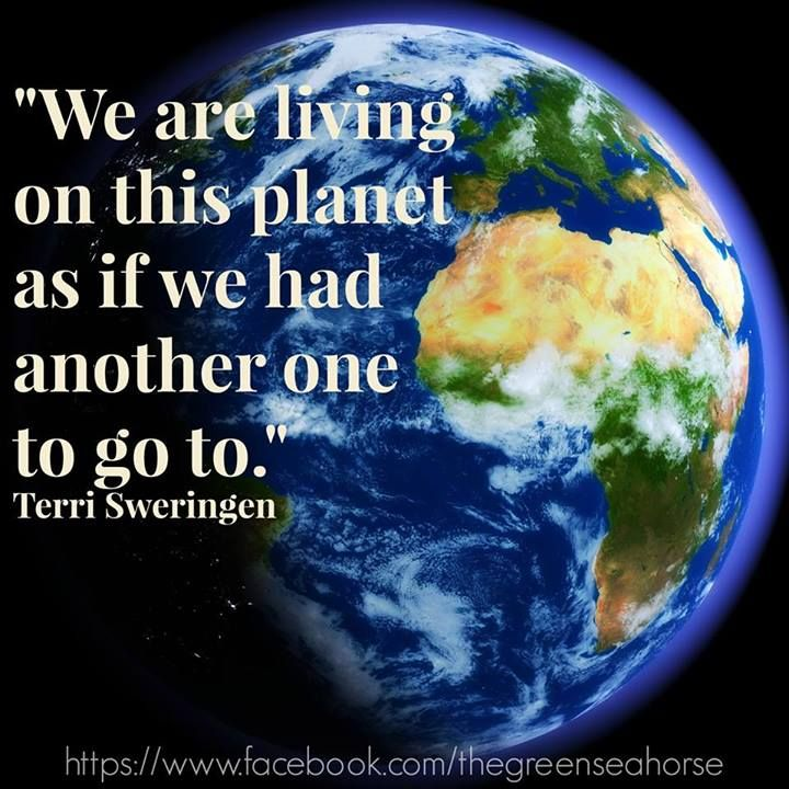 Earth Quotes Impressive 8 Best Quotes On The Environment Images On Pinterest  Mother Earth . Decorating Design