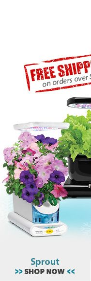 Shop Save On Aerogardens Seed Kits Grow Bulbs 640 x 480