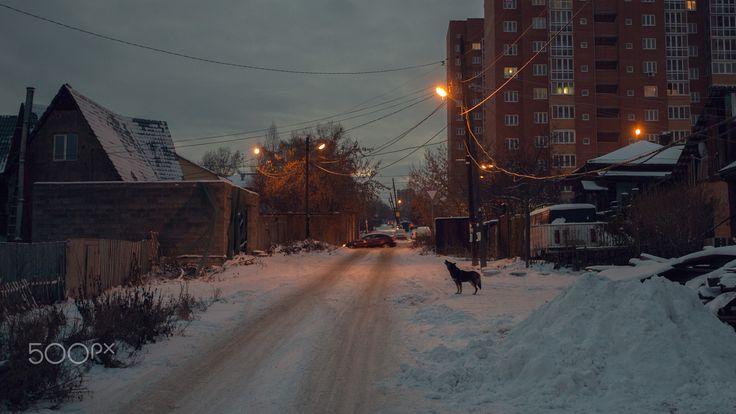 Winter by SHU
