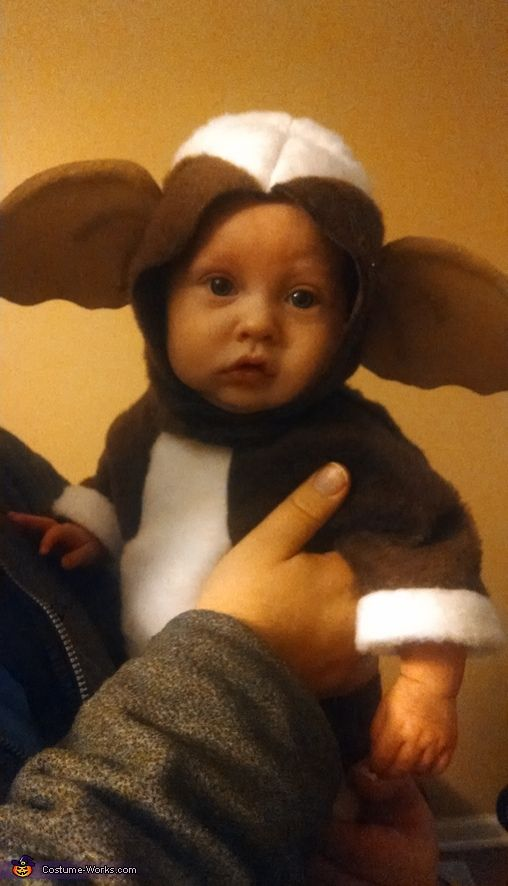 Christina: I searched the web for days/weeks and could not find a pre-made Gizmo costume for an infant. Not even a pattern to make one yourself. So I took matters into...