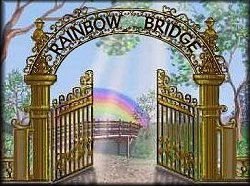 The Rainbow Bridge - A pet loss poem. So beautiful. This really helped when our kids lost their beloved hamster, Lil' Rascal. He died four years ago and my children still talk about Lil' Rascal and what he's doing at Rainbow Bridge.