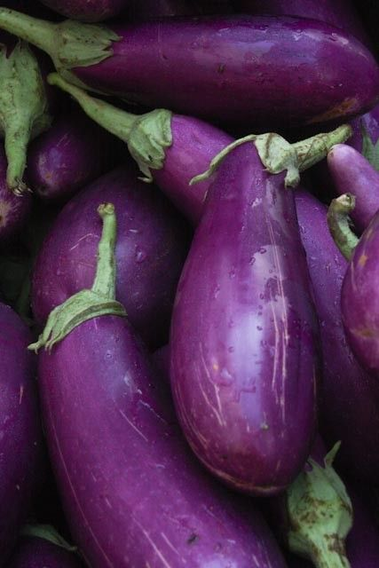 Plum Purple Eggplant at the Farmers Market, Food Photography, Deep Purple, Kitchen Art, Food Kitchen Decor on Etsy:
