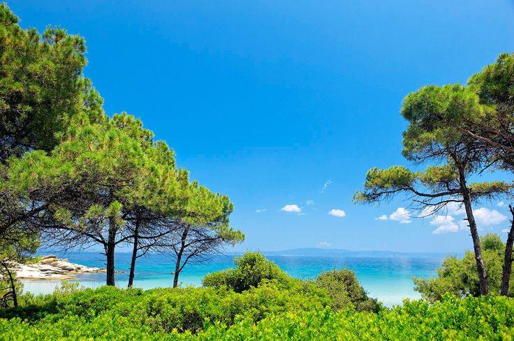 Ekies All Senses Resort - Halkidiki, Hellas