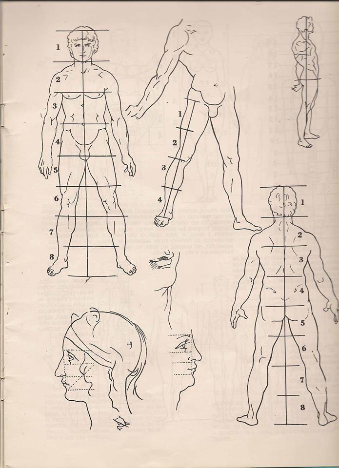 Mejores 32 imágenes de drawing the human body en Pinterest ...