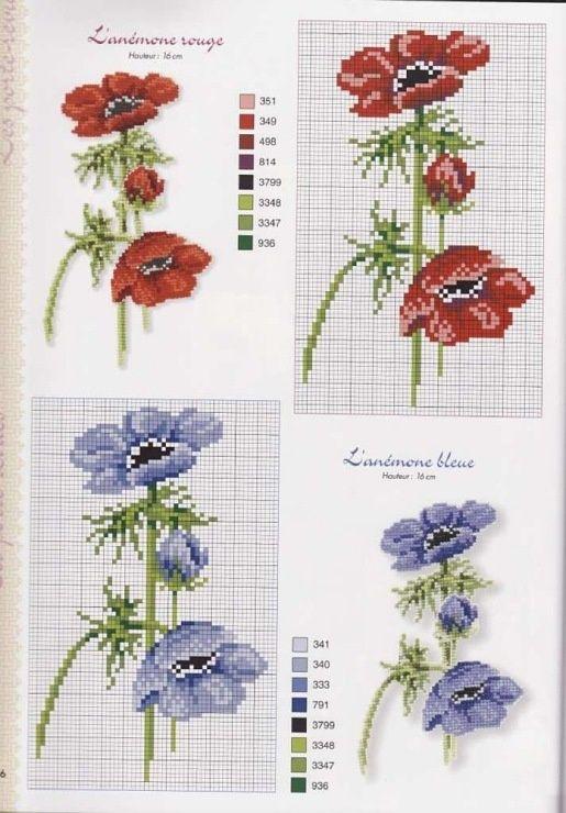 0 point de croix grille et couleurs de fils fleurs, anémone rouge et bleue