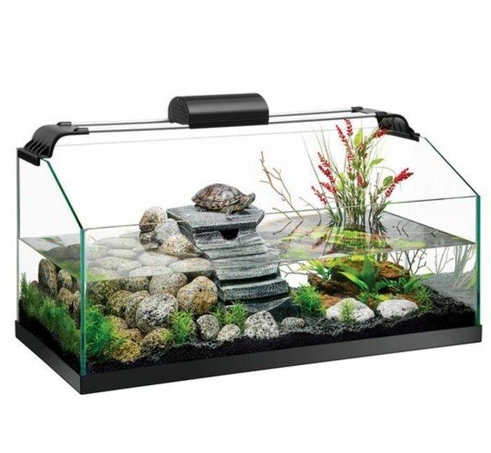 Aquarium Einrichtung Sorgt Fur Das Wohlfuhlen Der Wassertiere Archzine Net Aquarium Einrichten Wasserschildkroten Aquarium Aquarium