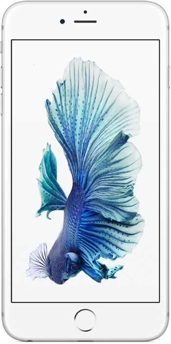 iPhone 6S+ цвет серебристый 32 ГБ 128 ГБ | iPhone | Pinterest | Betta Fish, Betta and Fish