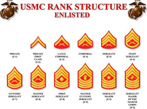 Enlisted rank insignia (Sleeve), contemporary U.S. Marine Corps.