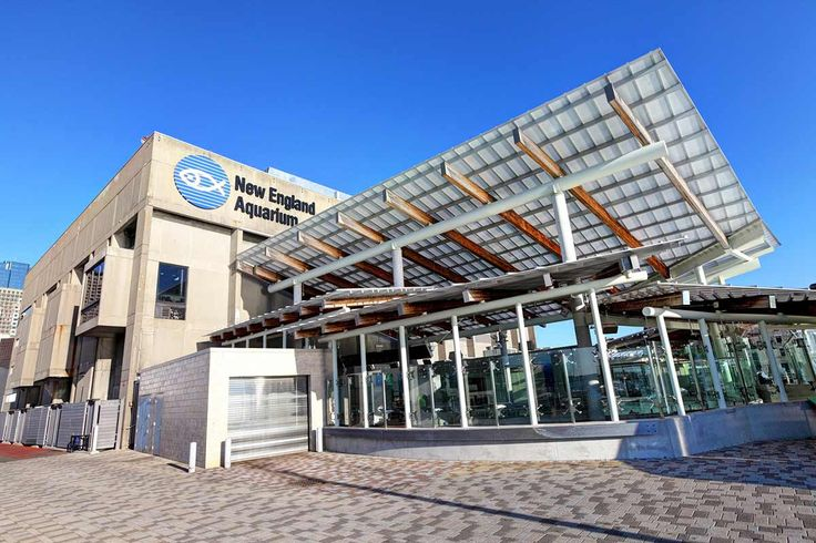 Learn about New England Aquarium in Boston with our complete information guide featuring historical facts, map, pictures, and things to do nearby.