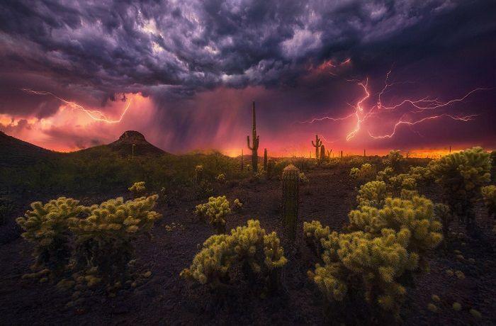 Фейерверк в пустыни. Автор фотографии: Марк Адамус.