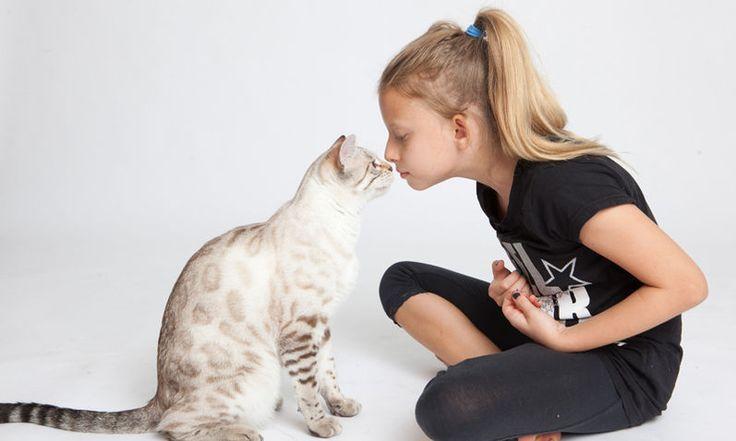 Escoja la mascota ideal para sus hijos.