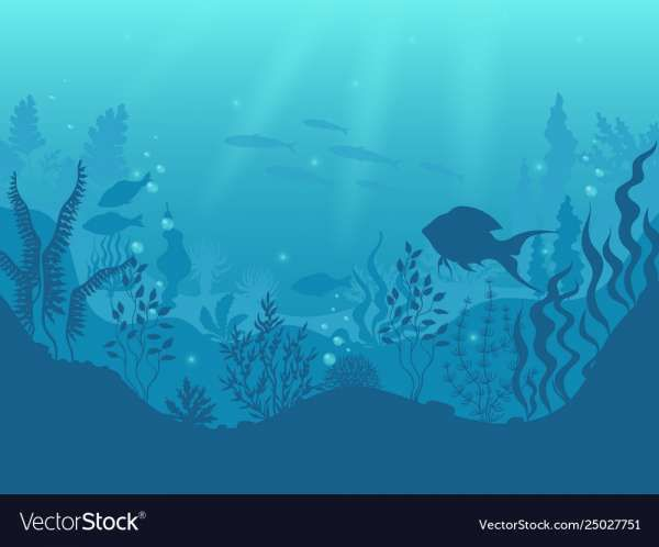 10 Fish Silohitte Under The Ocean Png Background Ocean Drawing Coral Reef Drawing Underwater Cartoon