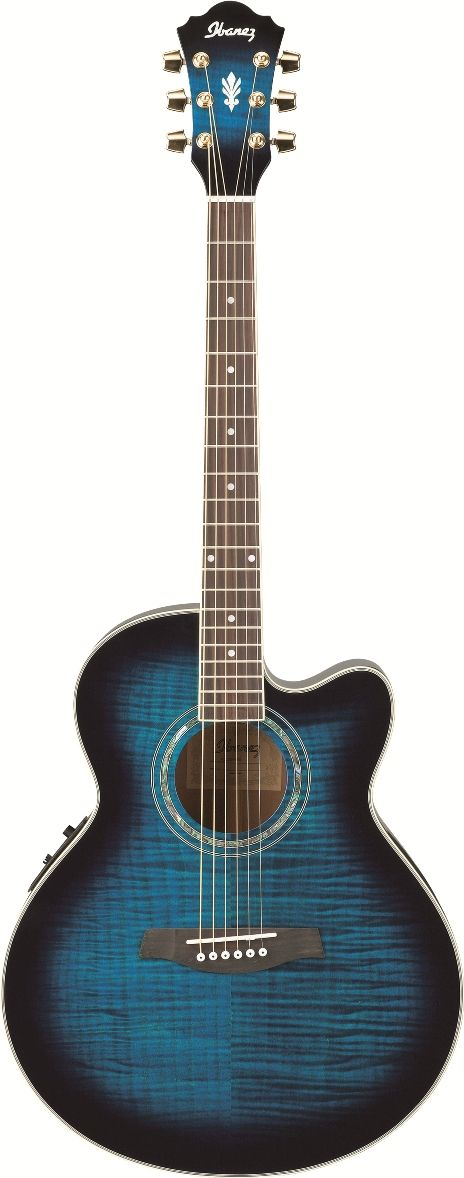 Ibanez AEL20ENT Acoustic Electric Guitar. My dream guitar! If anyone bought me this I would love them forever