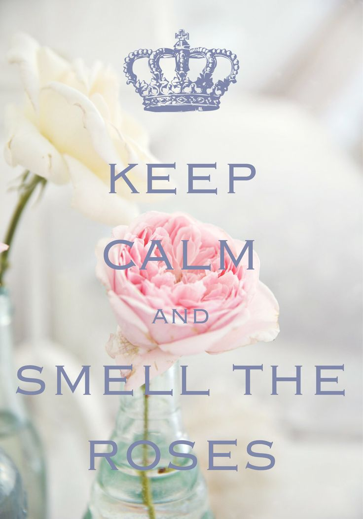keep calm and smell the roses / created with Keep Calm and Carry On for iOS #keepcalm #roses
