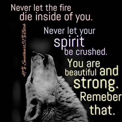 Image result for beautiful wolf quotes pinterest