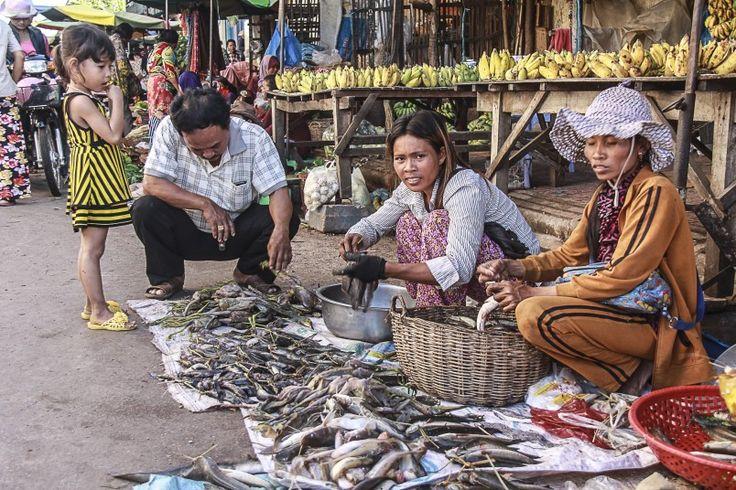 """Résultat de recherche d'images pour """"pursat cambodge"""""""