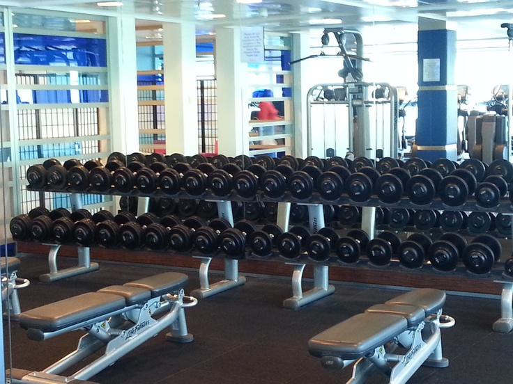 The Gym - weight rack